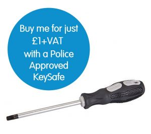 One Piece T30 Screwdriver for Installing C500 & P500 KeySafe™
