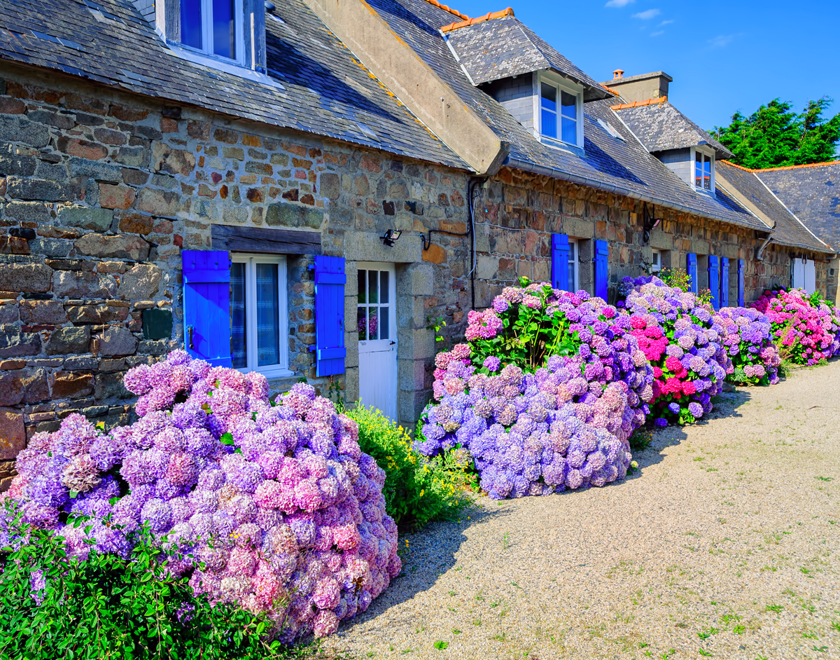 holiday cottages in summer
